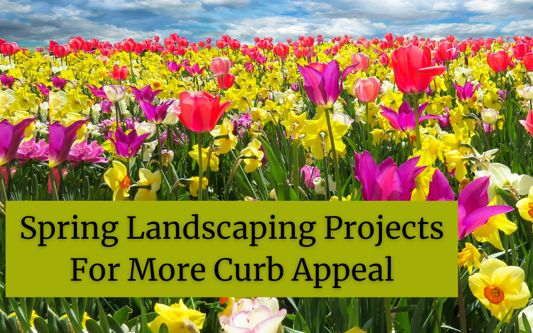 Spring Landscaping Projects For More Curb Appeal